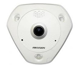 Caméra IP Fisheye Anti...